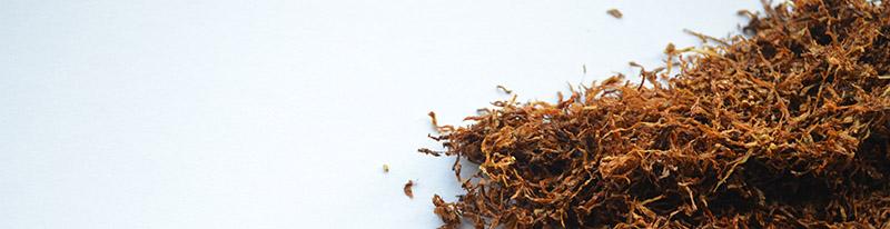 bandeau tbc flavour power