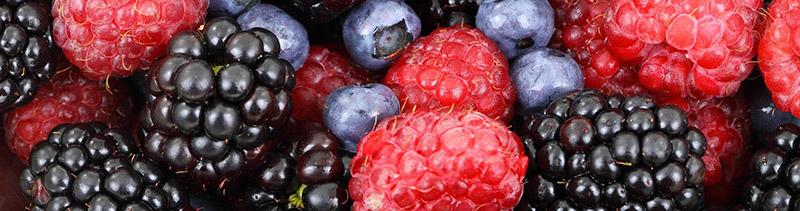 fruits rouges photos