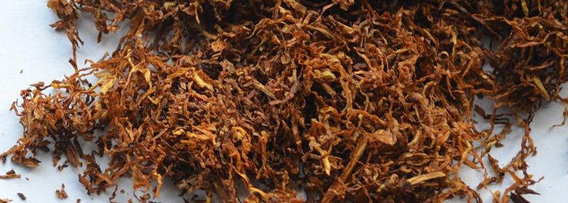 tbc virgin leaf