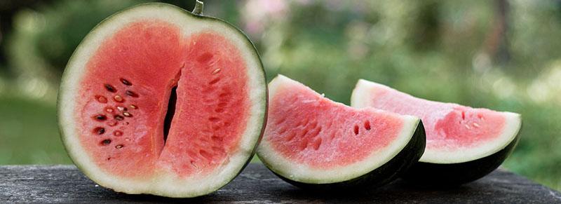 eliquide watermelon pastèque flavor hit